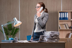The businesswoman working in the office Royalty Free Stock Photo