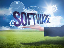 Businesswomans hand presenting the word software Stock Photo