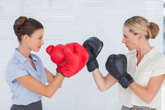 Businesswomen with boxing gloves fighting Stock Image