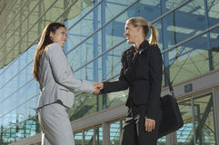 Businesswomen Greeting Each Other Stock Image