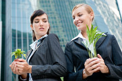 Businesswomen with Plants Royalty Free Stock Photos