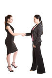 Businesswomen shaking hands Stock Photo