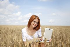 Businesswomen in white with notebook at wheat fiel Stock Photo