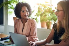 Businesswomen working together at a boardroom table in an office royalty free stock photos