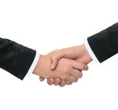 Businesswomens shaking hands Royalty Free Stock Image