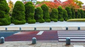 Buskar inom Hiroshima fred Memorial Park royaltyfri foto