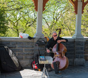 Busker in Belvedere Castle. New York, NY USA -- April 28, 2017 -- A cellist plays music in Belvedere Castle in New York`s Central Park .Editorial Use Only royalty free stock photo