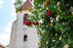 Buskerosor som blommar mot bakgrunden av kapellet Suddig bakgrund av den gotiska kyrkan för röda rosor royaltyfri foto