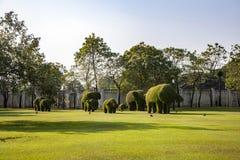 Buskesnitt till djura figufres i parkera av smällen PA-i slott Royaltyfria Foton