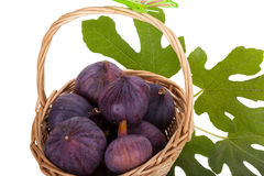 Busket свежих смокв с листьями на белизне стоковое изображение