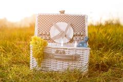 Busket bianco di picnic Fotografie Stock Libere da Diritti