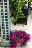 美丽忘记与花busket和b的白色装饰桌 免版税图库摄影