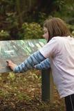 buskeutbildning Arkivfoton