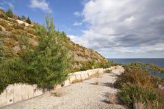 buskeväghav till trees Fotografering för Bildbyråer