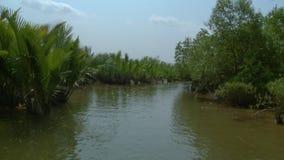 Buskigt gömma i handflatan och mangrovar, den Kangy floden, Myanmar stock video