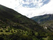 Buskigt grönt landskap av den höga Annapurna dalen Arkivfoton