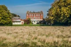 Buskigt hus, höst, London, England Fotografering för Bildbyråer