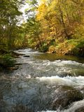 Buskruit rivier-Oktober Stock Foto's