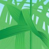 Busksnår av gräs Royaltyfri Bild