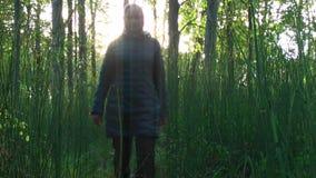 Busksnår av horsetailen i skogen som flickan går till och med busksnåren arkivfilmer