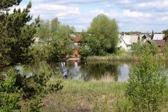 Busksnår av träd och buskar runt om dammet på en solig sommardag arkivfoton