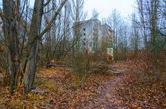 Busksnår i mitt av den övergav spökstaden Pripyat, zon för Tjernobyl NPP-uteslutande, Ukraina arkivbilder