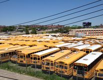 bussar fotografering för bildbyråer