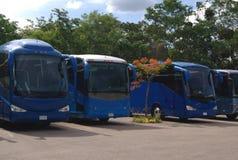 bussar lagledarear Royaltyfri Bild