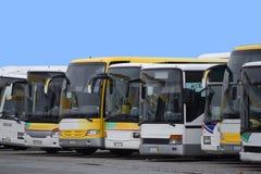 Busse in Folge stockbild