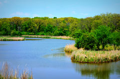 Busse Lake Island Stock Photo