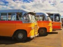 Busse von Malta lizenzfreies stockbild
