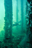 Busselton Jetty Artificial Reef with Scuba Diver Stock Photo