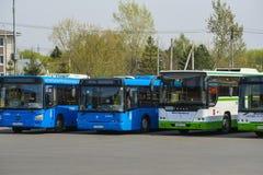 bussen het parkeren stock afbeeldingen