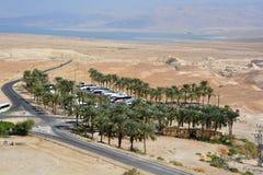 Bussen in Masada-oase royalty-vrije stock fotografie