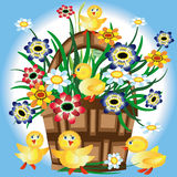 Bussket With Flowers And Ducklings. Royalty Free Stock Image