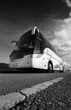 bussturist Arkivfoto