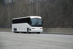 busswhite arkivbilder