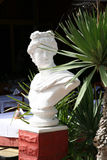 Bust of Apollo near palm tree Stock Images