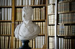 Bust and Bookshelf Royalty Free Stock Photos