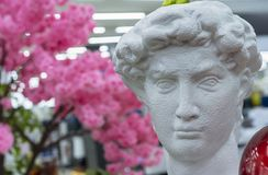 Bust of David by Michelangelo against a background of cherry blossoms royalty free stock photo
