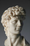 Bust of David Replica. Detail of replica of David in marble Royalty Free Stock Images