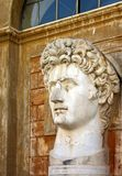 Bust of  David from Rome Stock Image