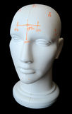 Bust Head with Electrode Markings Royalty Free Stock Photo