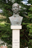 Bust Lewis Hamilton Stock Image