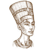 Bust of Nefertiti hand drawn Royalty Free Stock Photos
