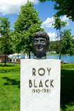 Bust of roy black Royalty Free Stock Photography