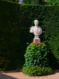 Bust sculpture. Bust statue of an unknown man on a base made in classical style in Santa Clotilde park, Lloret de Mar, Spain, against green juniper Stock Photos