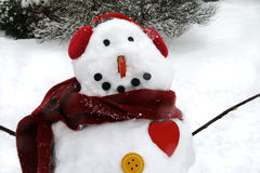 Bust of a Snowman Royalty Free Stock Images
