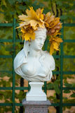 Bust of a young woman. Bust of a  Sibyl of Samos in the Summer Garden of St. Petersburg with a wreath of maple leaves Stock Image