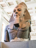 Buste de Ramesses II, 13ème siècle AVANT JÉSUS CHRIST, British Museum Images libres de droits